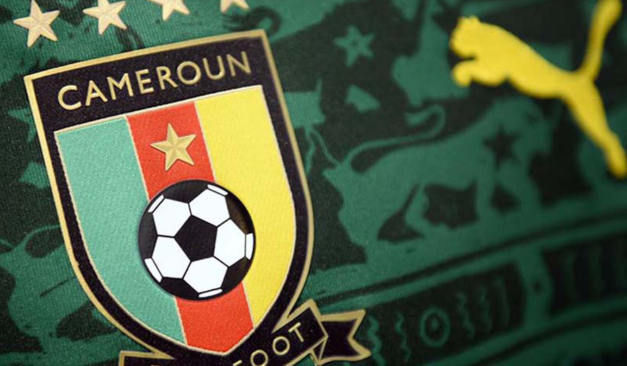 Image result for cameroon football federation