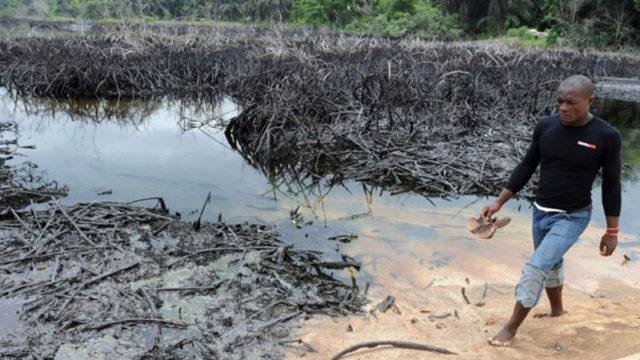 Site of an oil spillage PHOTO:Pius Utomi Ekpei / AFP