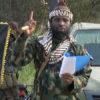 Suicide bombers kill 15 in Borno