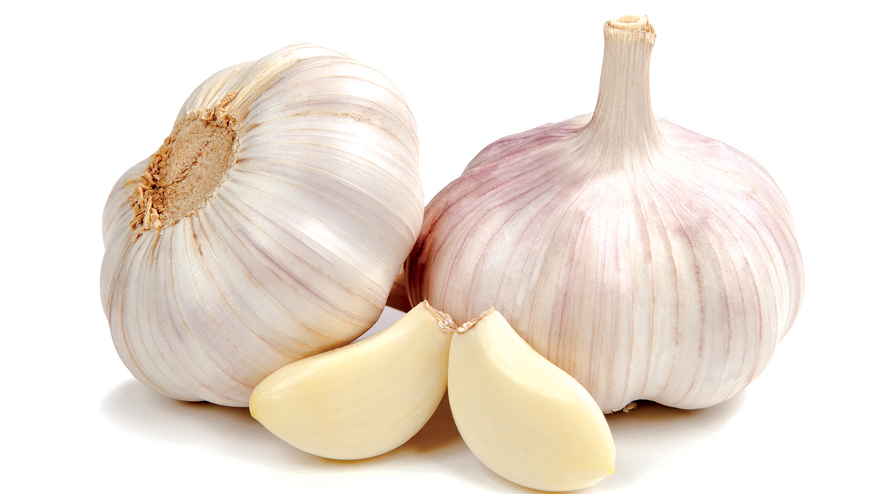 Garlic cure for hospital superbugs