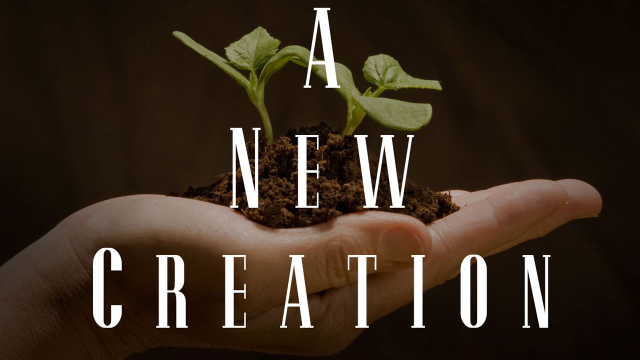 New-creation-in-Christ