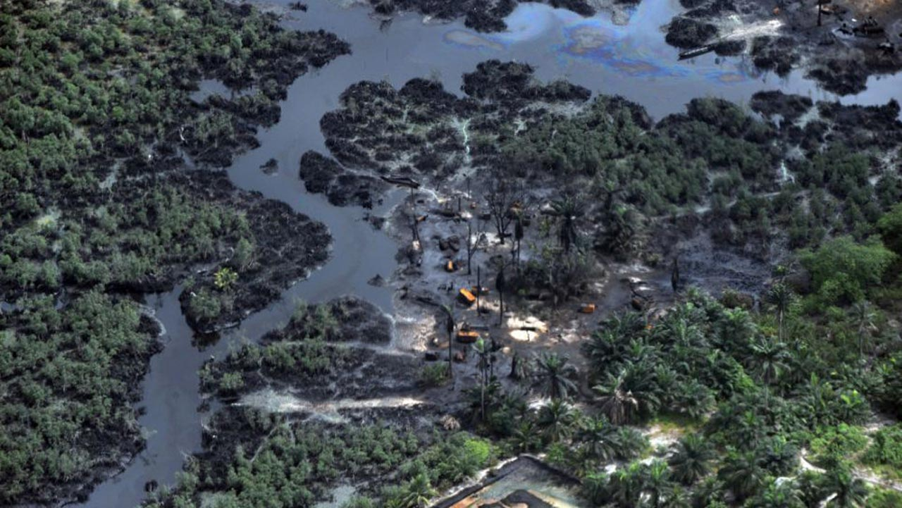 Niger Delta