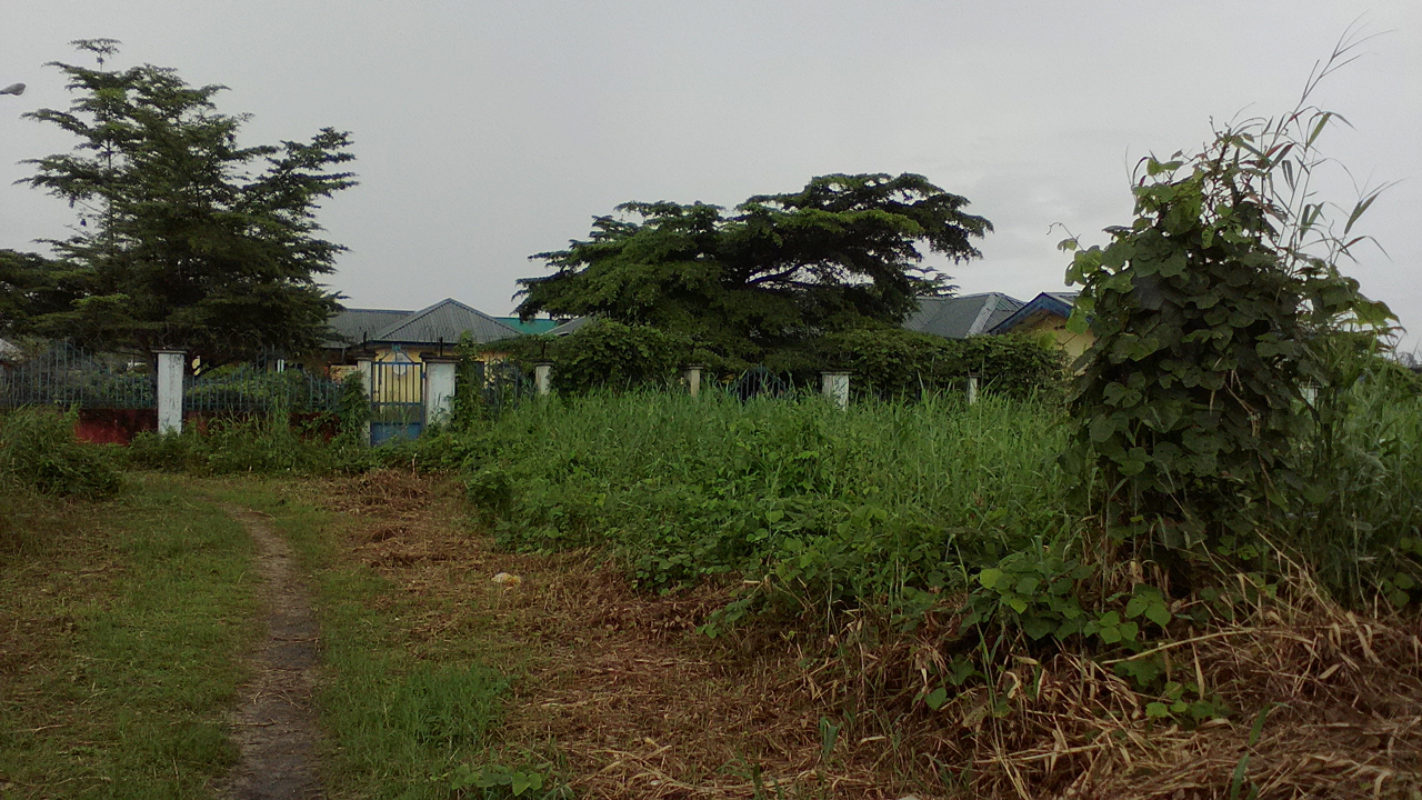 Hospital overgrown and deserted (Inset) Before Tompolo was sacked