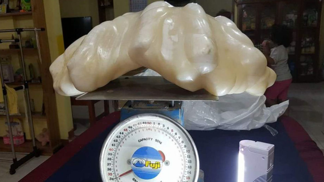 The clam pearl was found 10 years ago. PHOTO: Facebook: Aileen Cynthia Maggay-Amurao