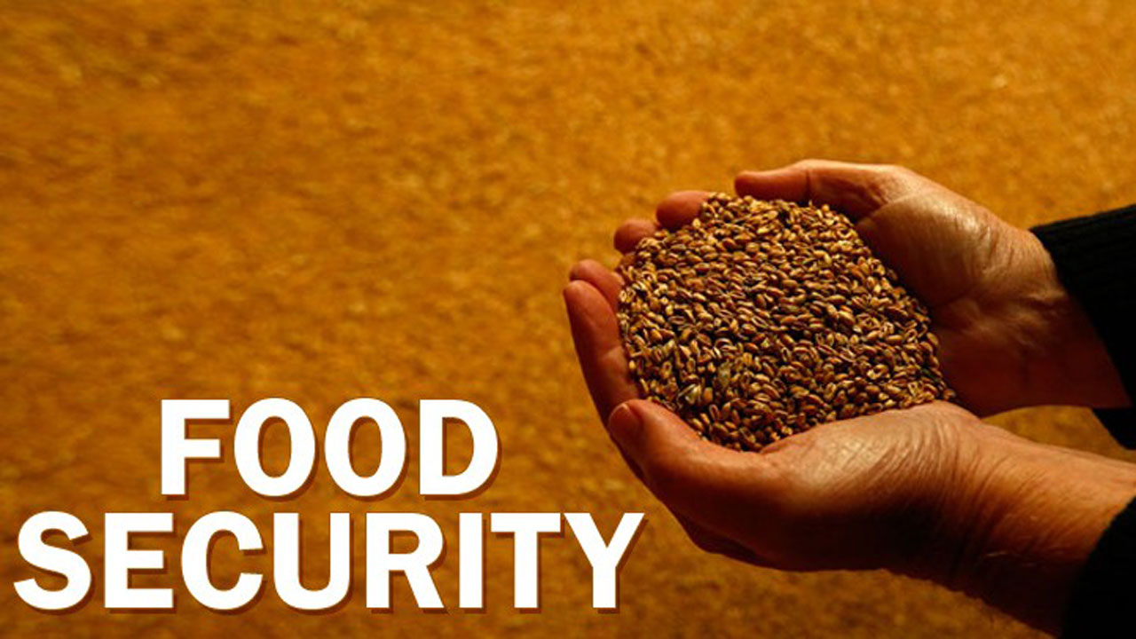 Boosting Food Security In Lagos Through Private Sector Partnership Features The Guardian