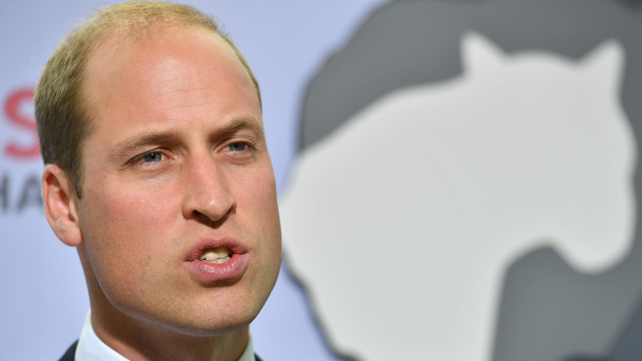 "Prince William, Duke of Cambridge gives the keynote address at conservation charity Tusk's ""Time For Change event"" at the The Shard in London on September 22, 2016. The aim of the event is to draw global attention to the continuing threat to many of the world's species from the illegal wildlife trade. Ben STANSALL / POOL / AFP"