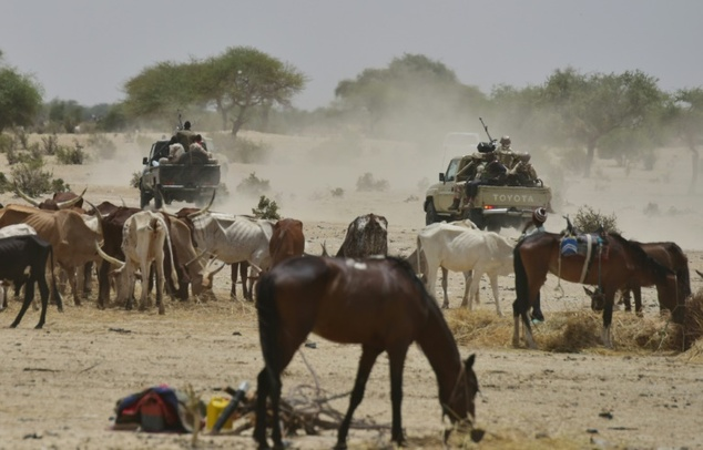 Niger soldiers patrol near a village in the Diffa region. PHOTO: AFP/Issouf Sanogo