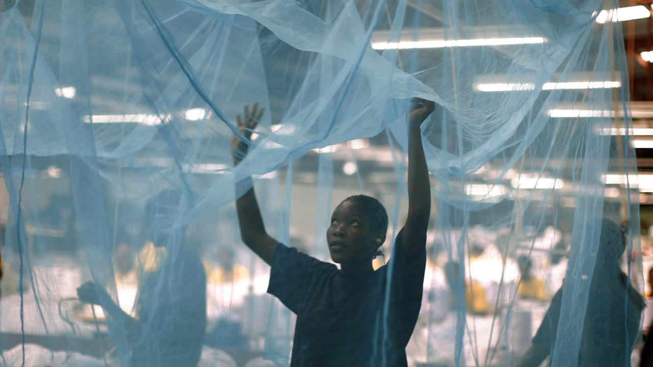 Ghana, Kenya and Malawi to pilot GSK malaria vaccine from 2018