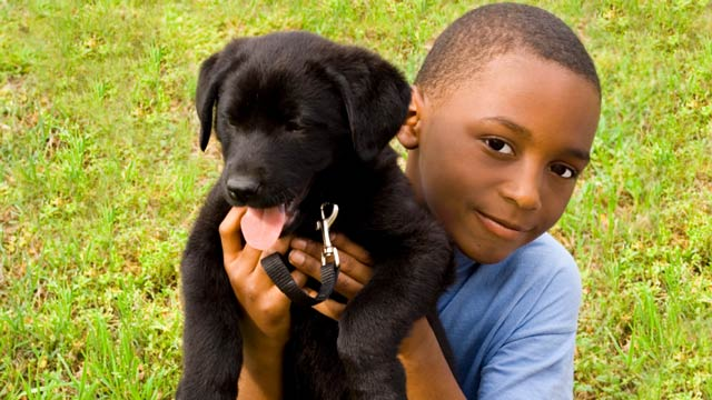 Boy-&-Puppy