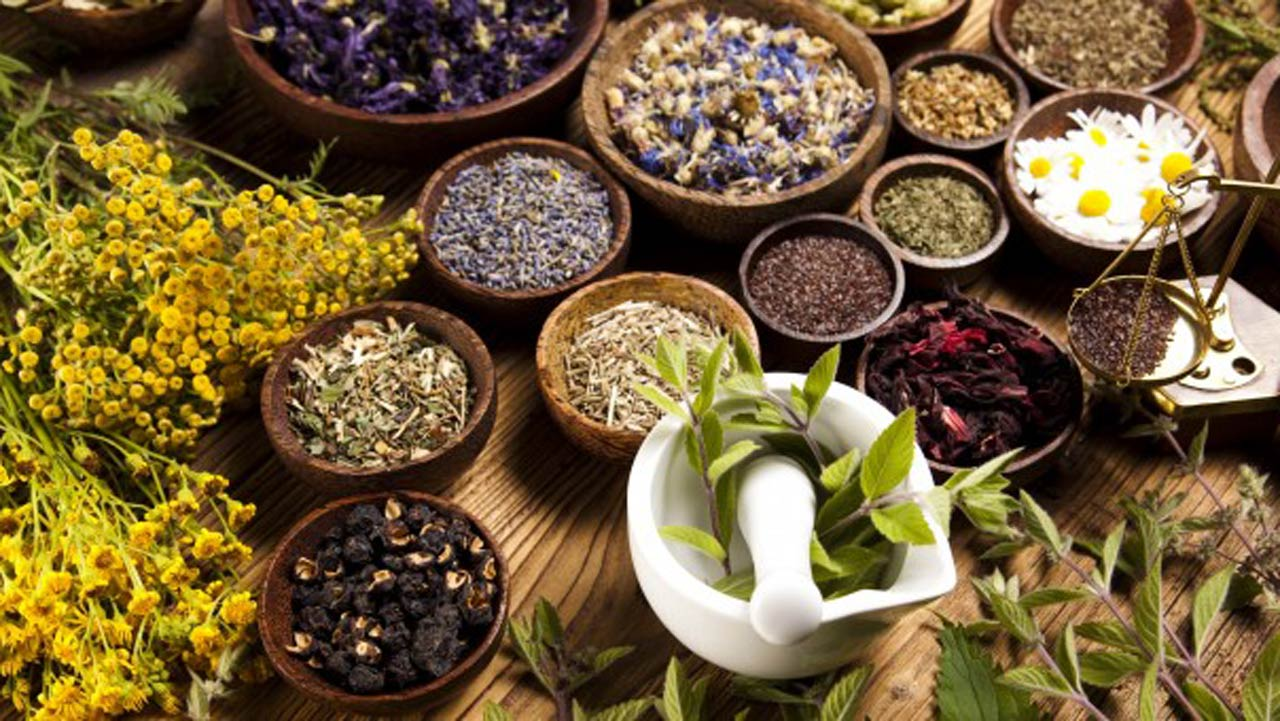 History and benefits of herbal medicine — Features — The ...