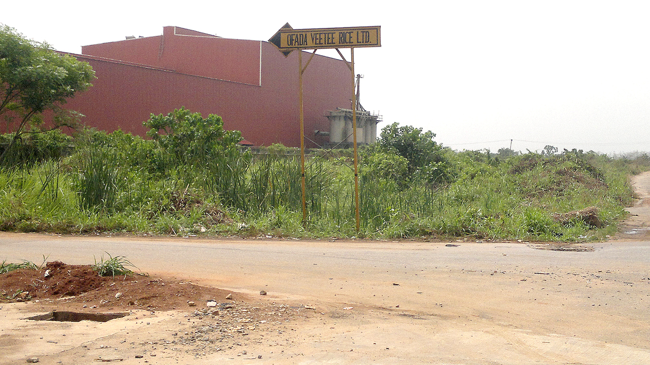 The abandoned Rice factory PHOTO: GBENGA AKINFENWA