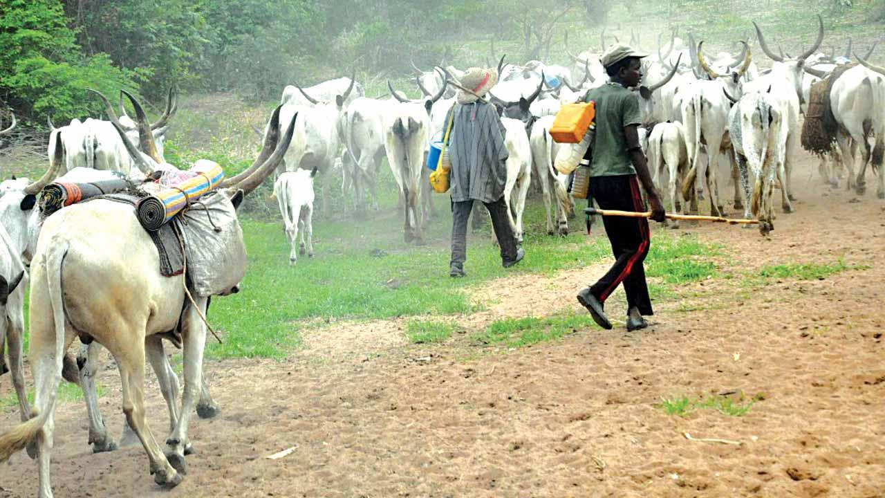Label herdsmen terrorists or risk wrath of militias, group tells Buhari