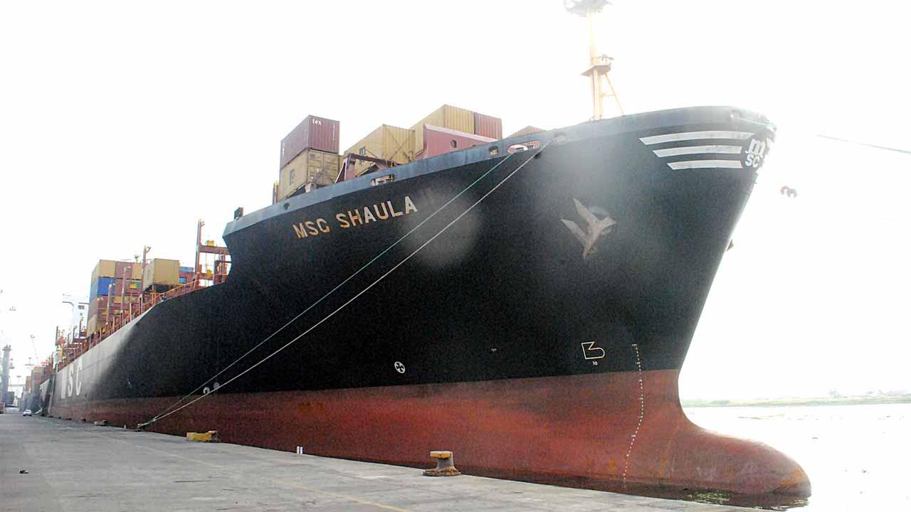 MSC Shaula at the Tin Can Port