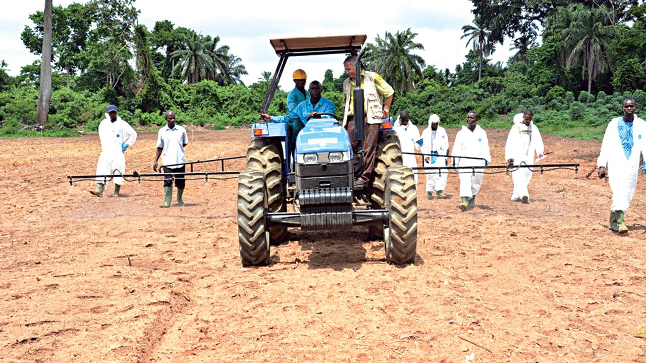 Participants undergoing practical training organised by International Institute of Tropical Agriculture (IITA)-Cassava Weed Management Project (CWMP) in Ibadan, Oyo State.                           PHOTO: IITA