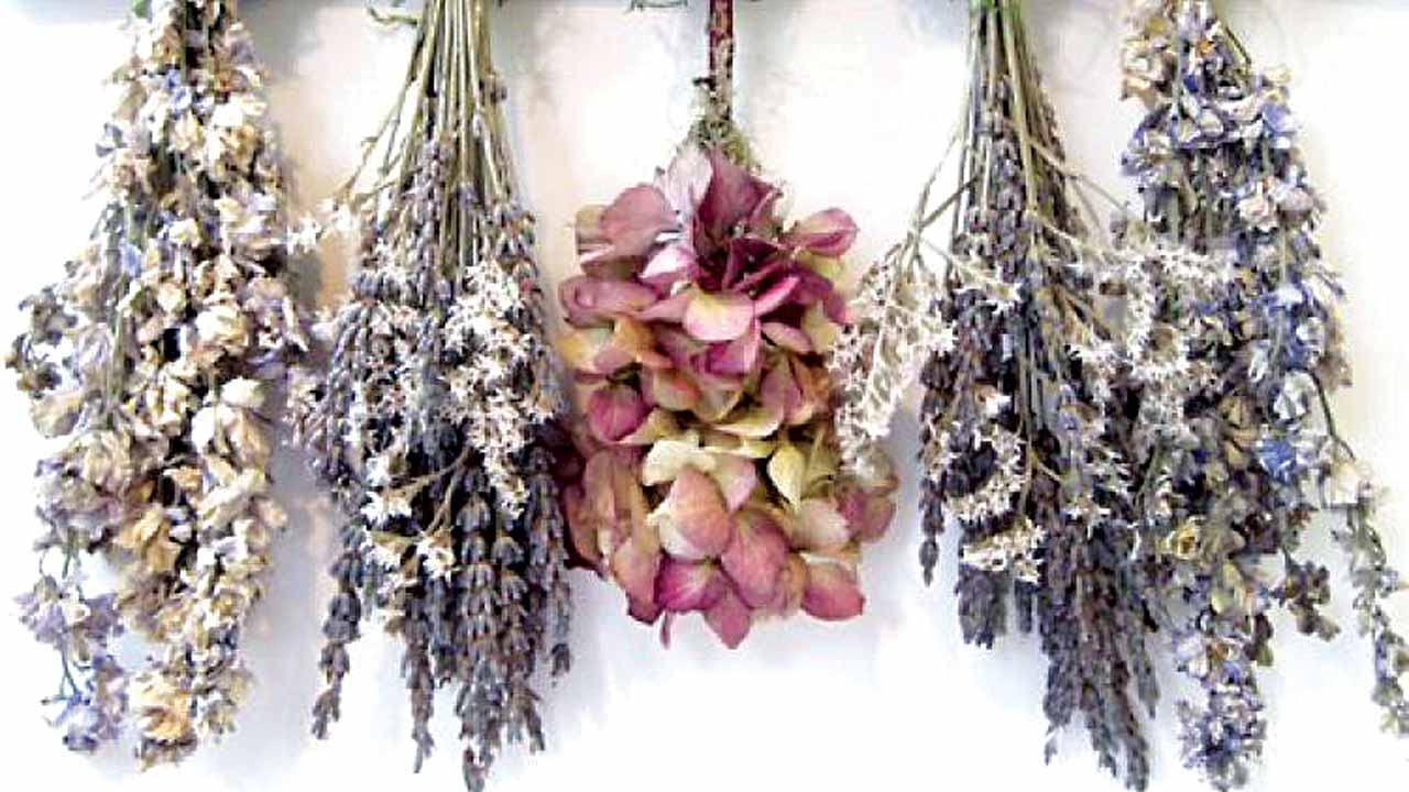Air-dried flowers and plant materials