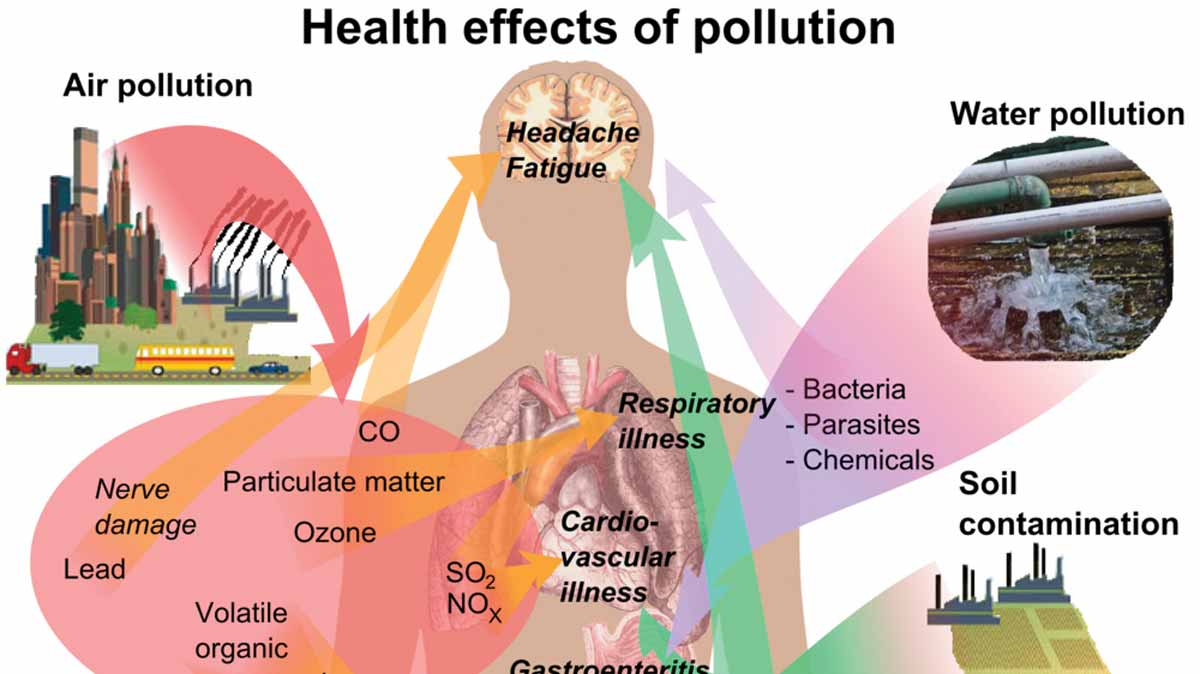 AIR POLLUTION... This is a major public health issue for people living in polluted urban areas where exercise could damage the lungs and potentially lead to decompensated heart failure.   PHOTO CREDIT: Image courtesy Wikimedia Commons Related images: Related image Related image Related image Related image Related image Related image Related image Related imageView more Images may be subject to copyright.Send feedback Image result for air pollution and health concerns Our Concerns – STOP Medway Peaker Project STOP Medway Peaker Project - WordPress.com656 × 345Search by image Heinz_Infographic_HealthEffects_v02. Particulate Matter Air Pollution ... Images may be subject to copyright.Send feedback