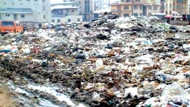A refuse dump in Onitsha