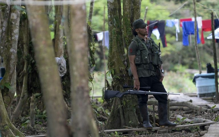 A FARC fighter guards a checkpoint in the Vegaez municipality, on January 1, 2017 PHOTO:AFP