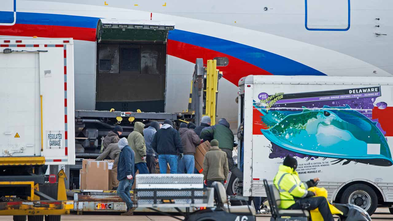 A Russian aircraft is loaded with freight at Dulles International Airport December 31, 2016, in Sterling, Virginia, just outside Washington, DC. The special flight arrived to pickup Russian diplomats expelled by US President Barack Obama as part of sanctions imposed on Russia for suspected cyberattacks during the US election. PAUL J. RICHARDS / AFP