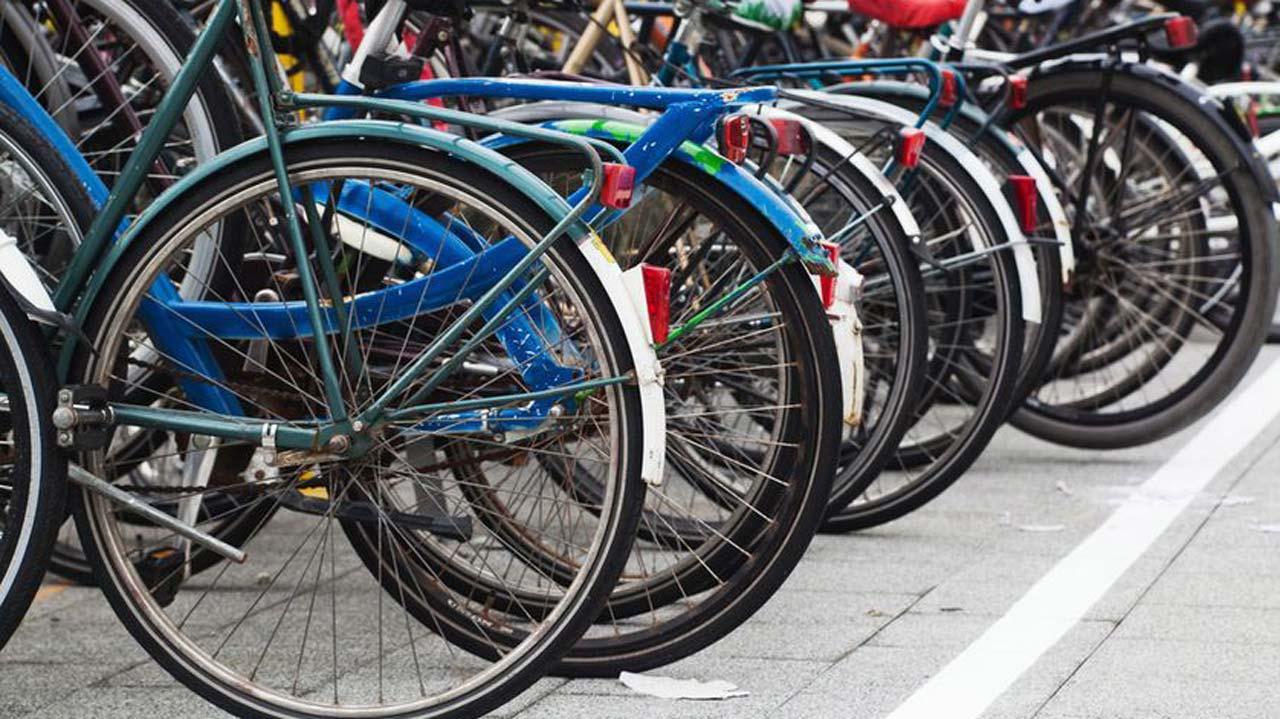 bikes-lined-up-jpg-838x0_q80