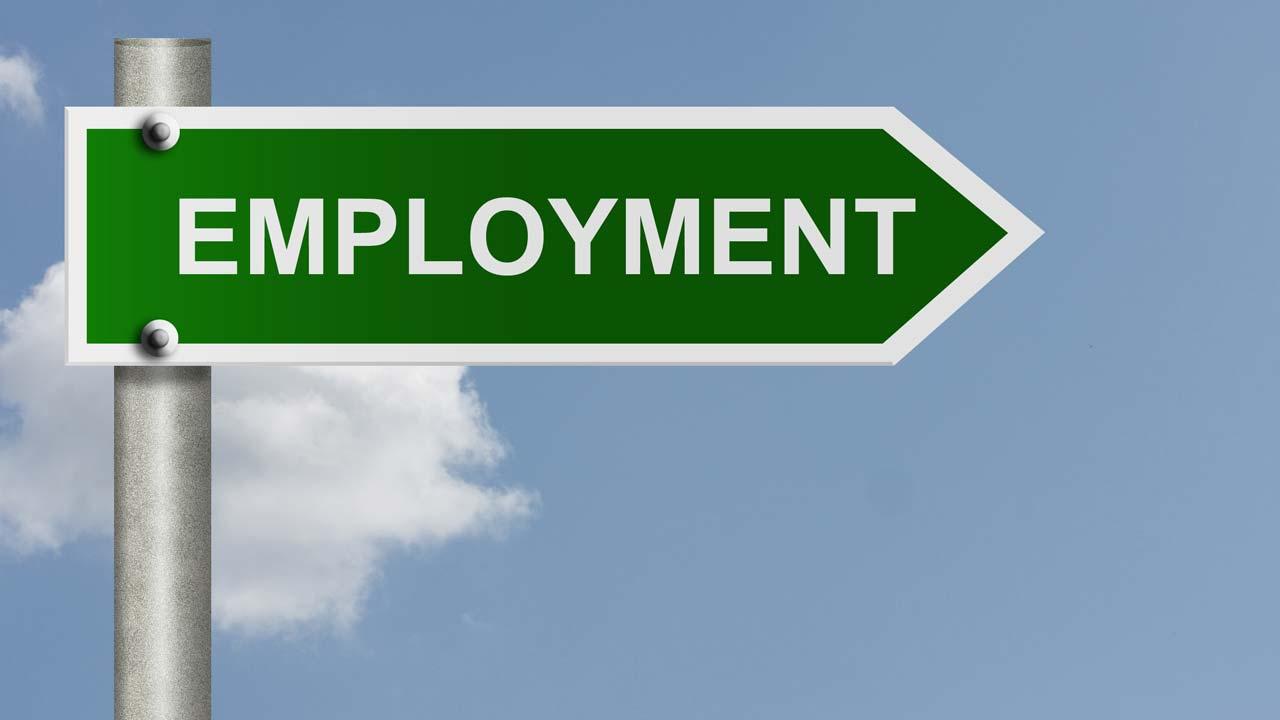 employment-rise-1