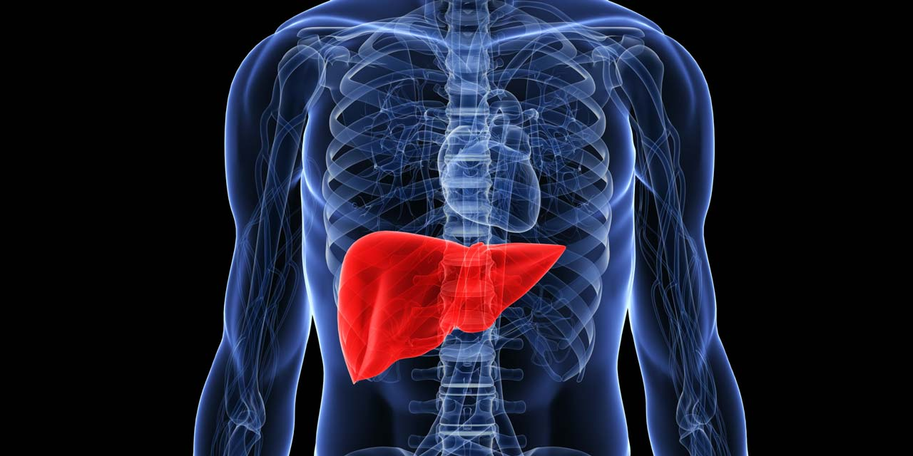 Liver cleansing and wellbeing of the liver — Features — The Guardian ...