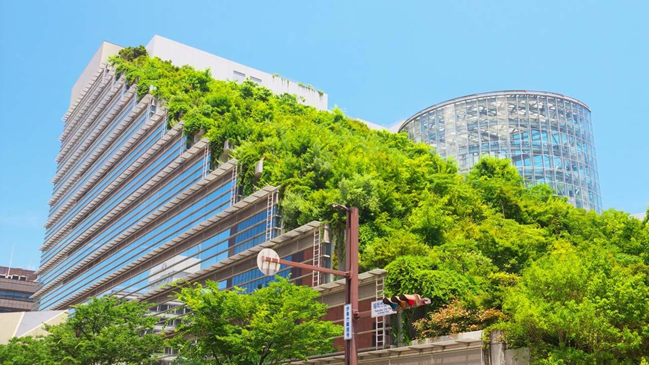 Constructing a green building the guardian nigeria news - Green design ...