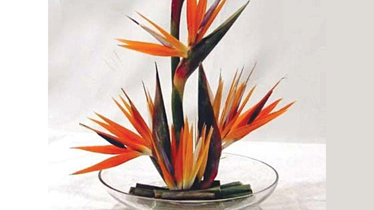 Flowers of easter saturday magazine the guardian nigeria centerpiece with bird of paradise in glass bowl buycottarizona