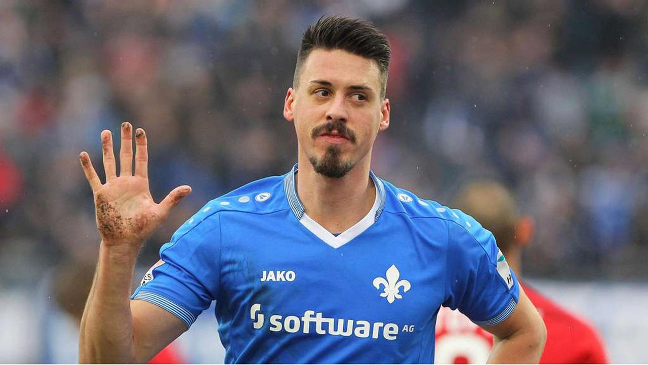 Image result for Sandro Wagner