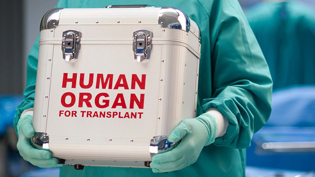 Should human organs for sale