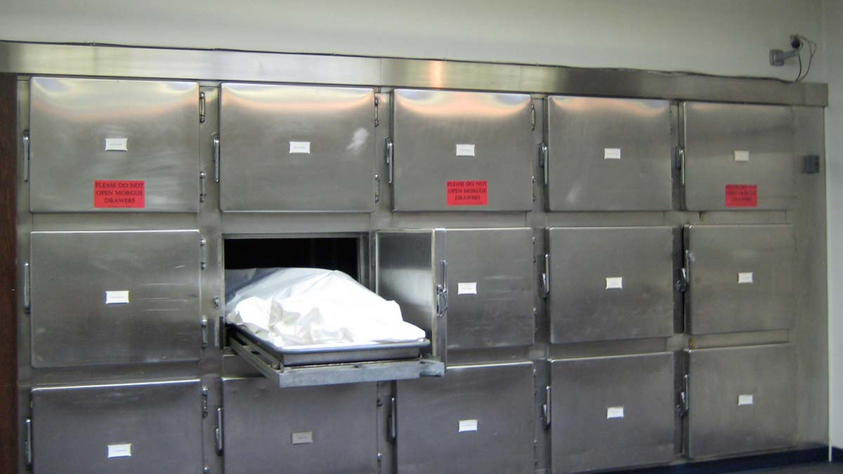 The Mortuary Assistant Lets You Assume The Role Of A ...  Mortuary