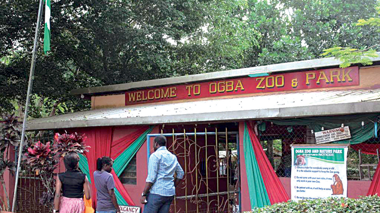 Image result for ogba zoo benin