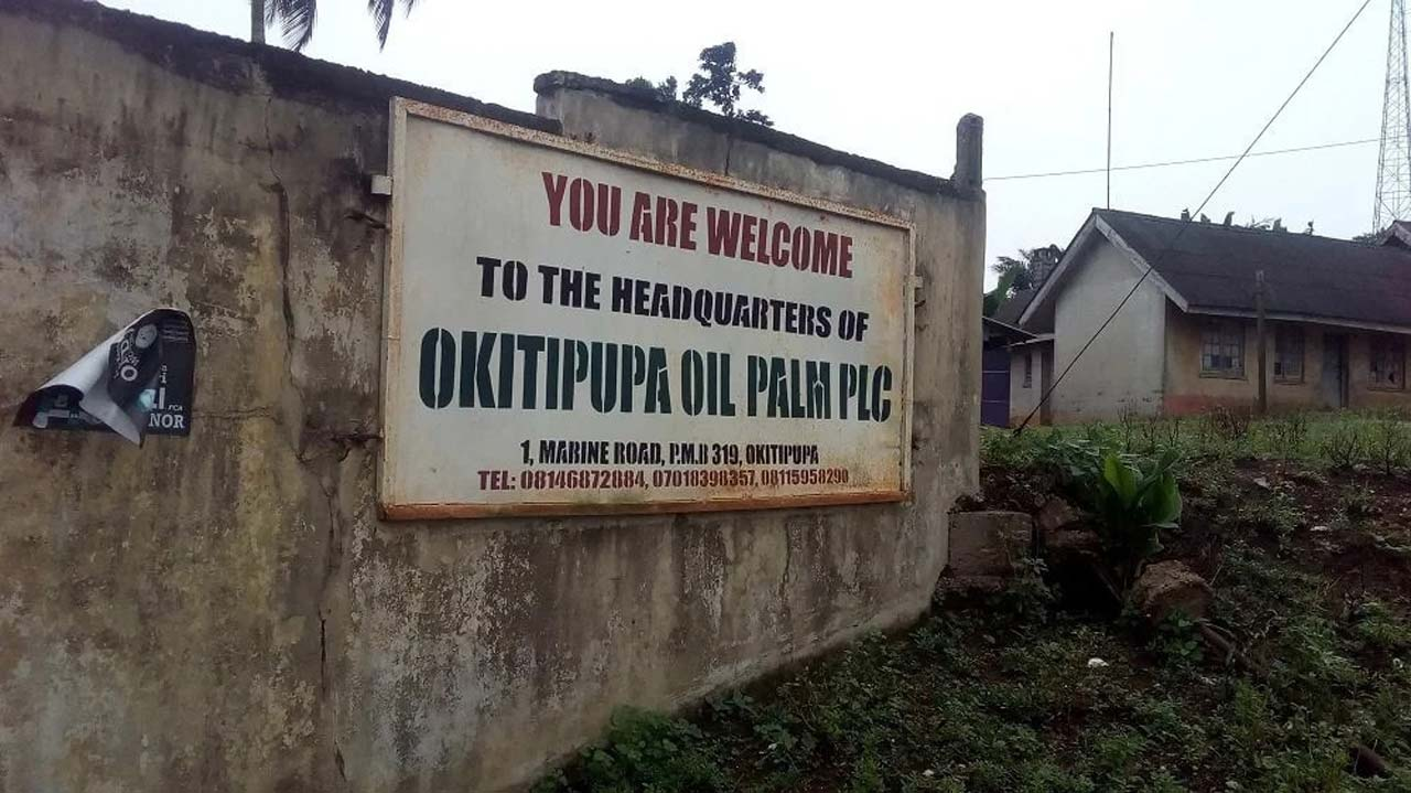 palm oil business plan in nigeria today