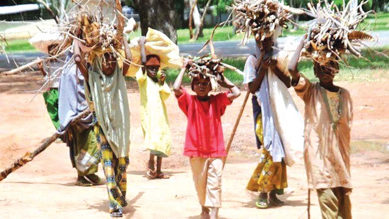 Image result for Child Labour in Nigeria
