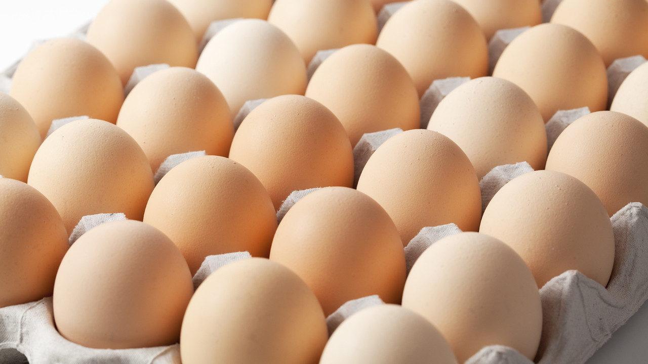 CBN to launch N10 billion fund for egg production