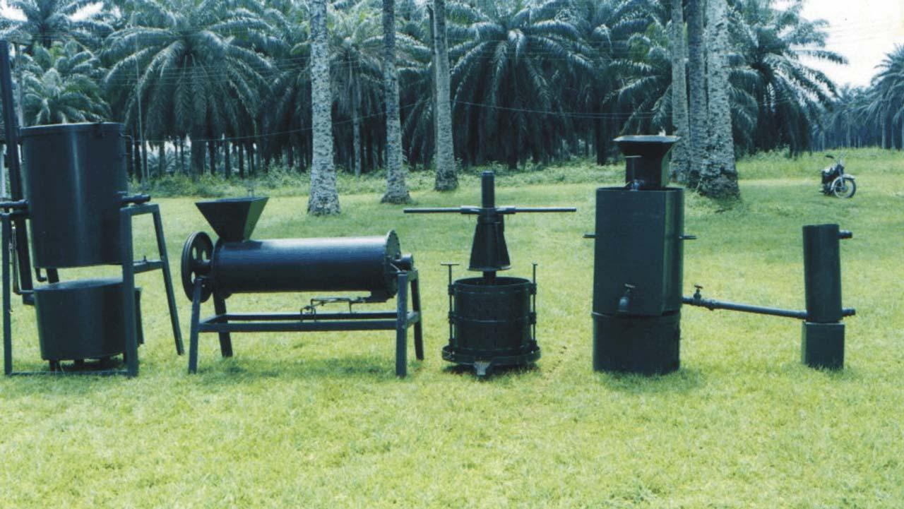 Oil Palm Plantation Standard Business Plan