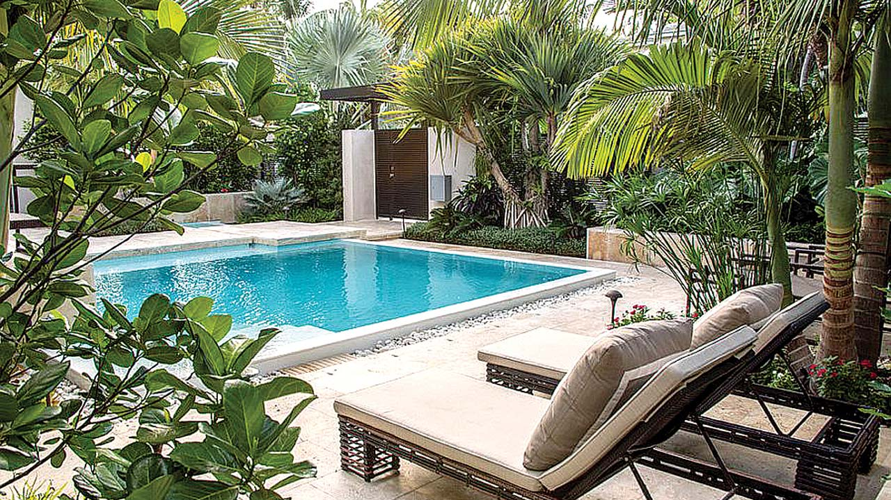 Tropical garden in any space or climate — Property — The ... on Tropical Backyard  id=62420