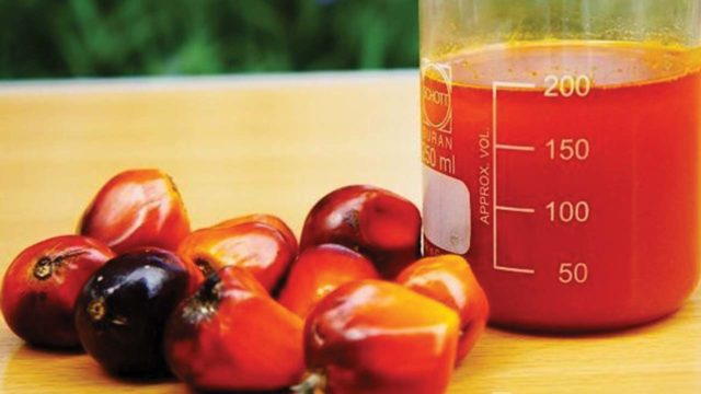as nigeria spends n116b on palm oil import