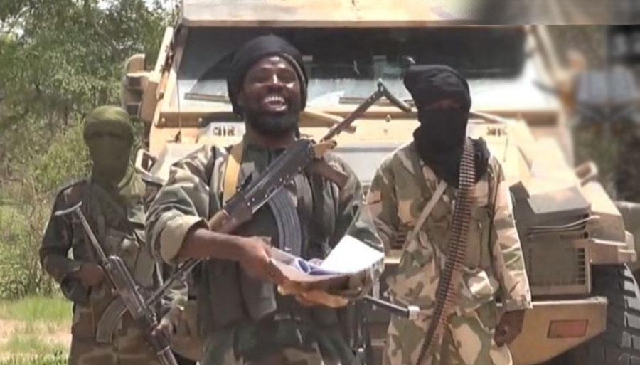 Niger says it killed 33 Boko Haram 'terrorists'