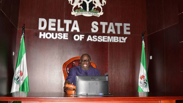 Delta lawmakers haven't received copy of proposed constitution amendment, says  Speaker