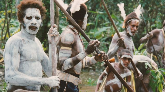 Asmat The Tribe Where Cannibalism Makes You A Real Man Guardian Life The Guardian Nigeria Newspaper Nigeria And World News