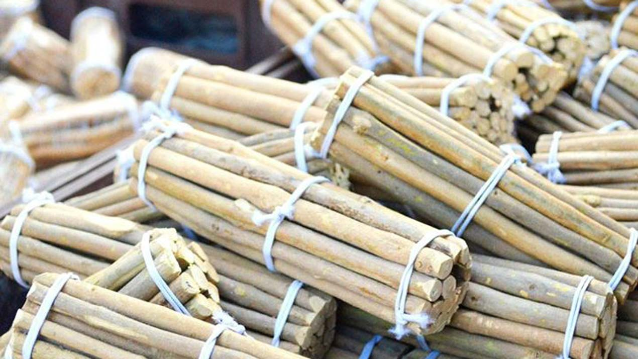 Image result for chewing stick