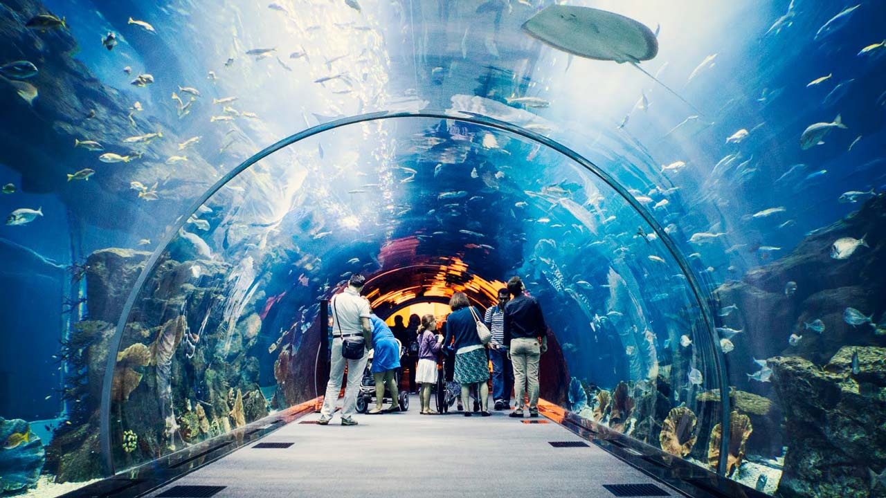 Tourism Experience: Family Travel Guide To An Amazing Dubai Experience