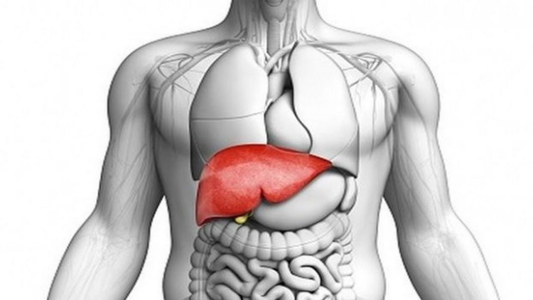take care of your liver with these helpful nuggets the guardian