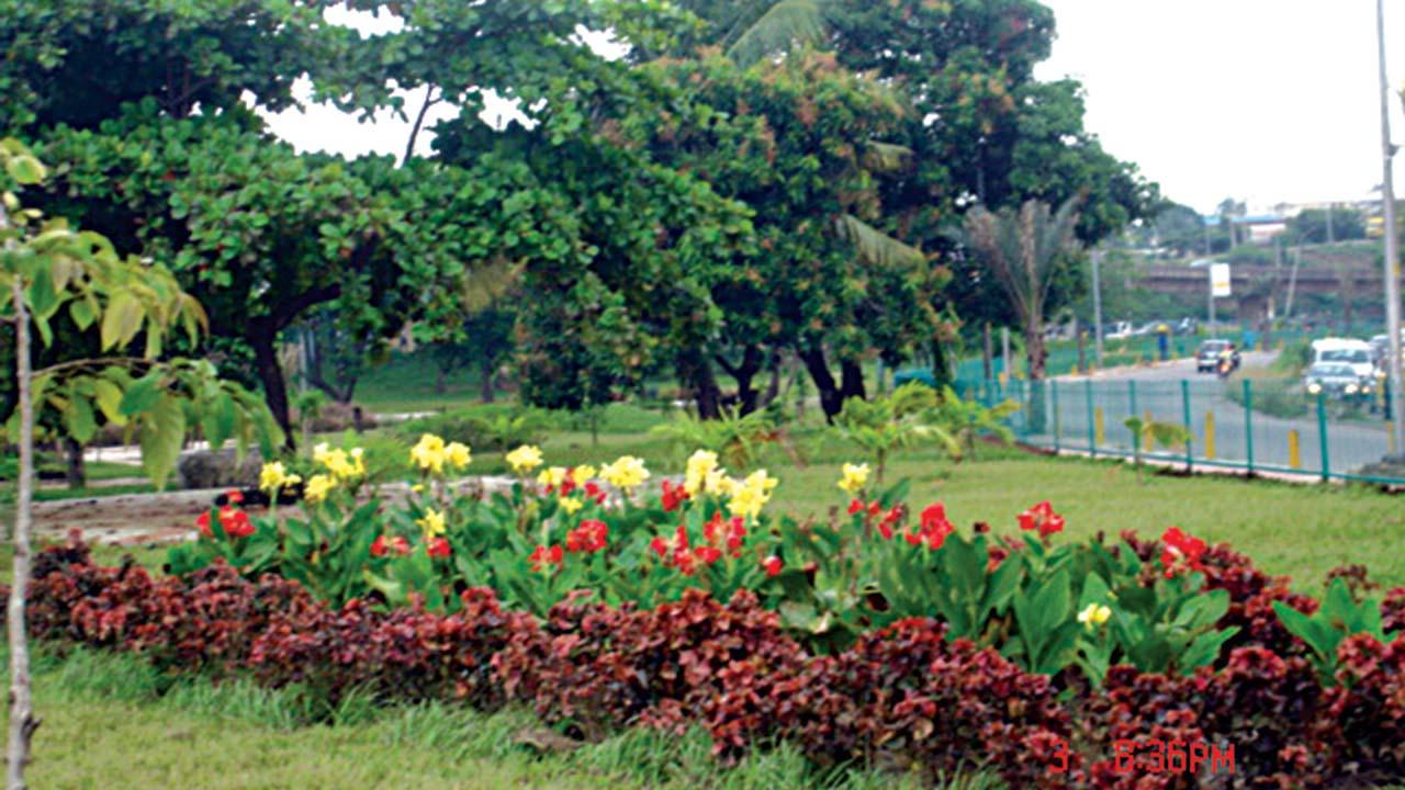 A Flower Garden The Guardian Nigeria News Nigeria And World