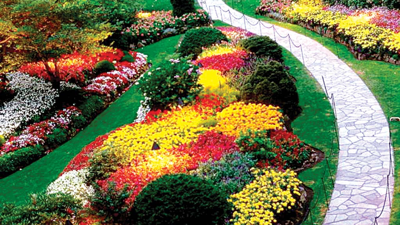 A Flower Garden Saturday Magazine The Guardian Nigeria