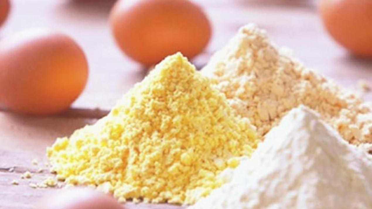 Image result for pictures of egg in nigeria market