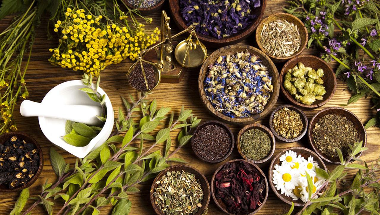 Картинки по запросу traditional medicine