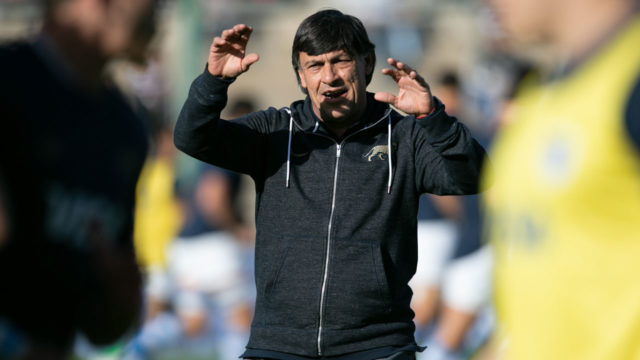 Argentina coach Hourcade to resign after Scotland Test