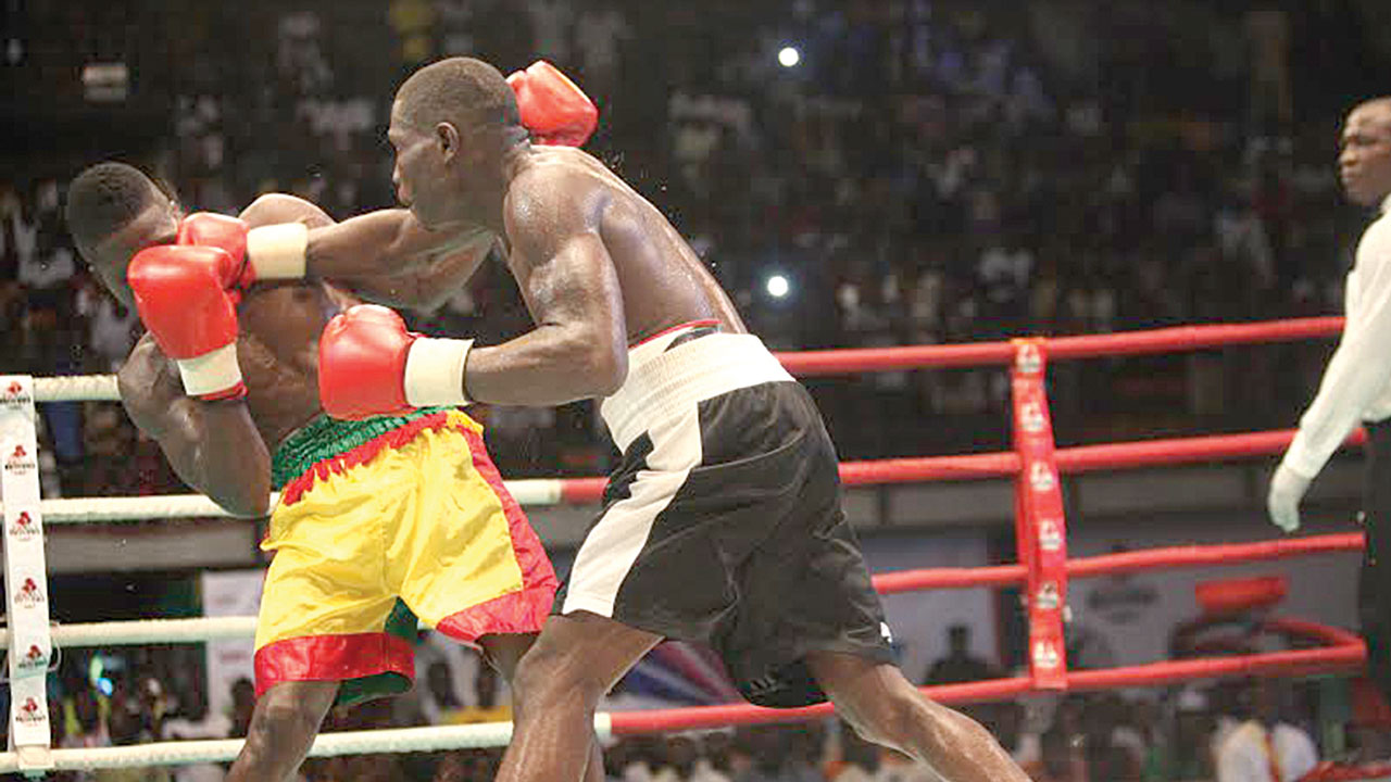 Image result for gotv boxing night
